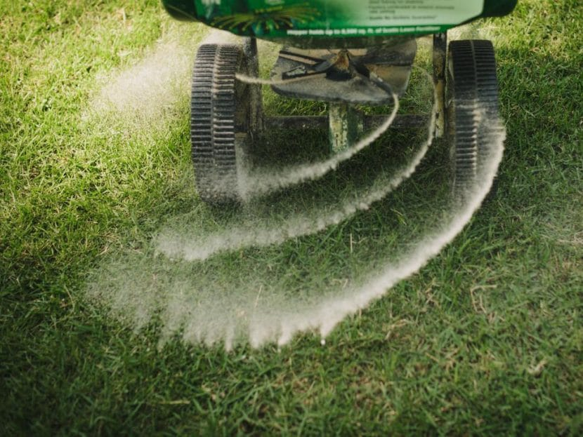 fertilizing-the-lawn
